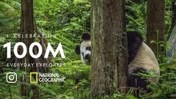 Cách National Geographic thống trị mạng xã hội bằng những bức ảnh biết kể chuyện